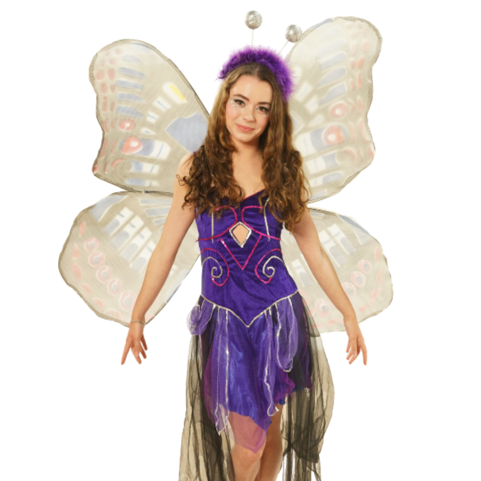 Butterfly Party EntertainerImage