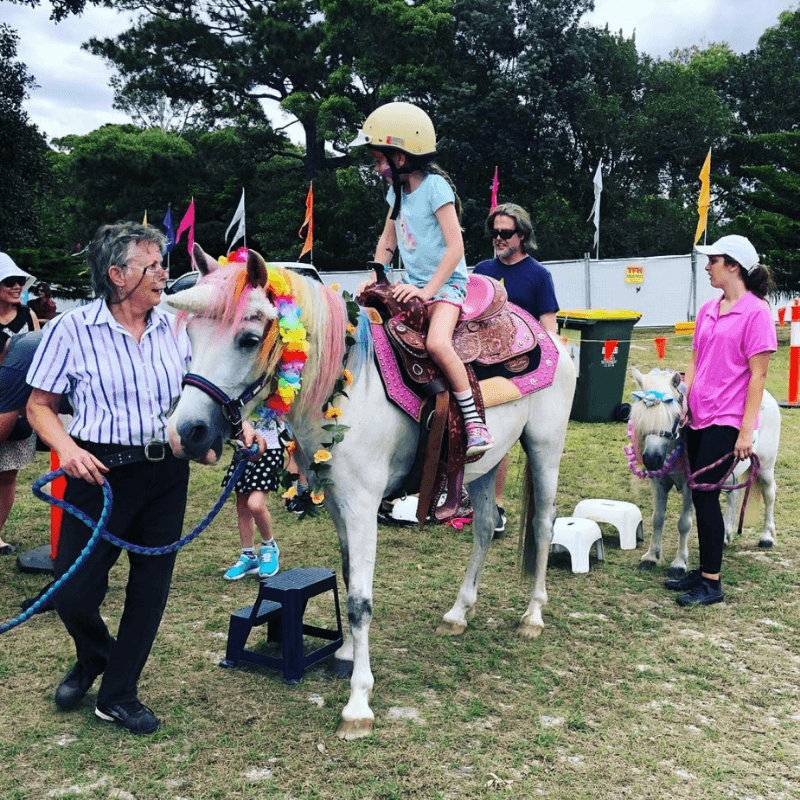 Pony Rides for Hire