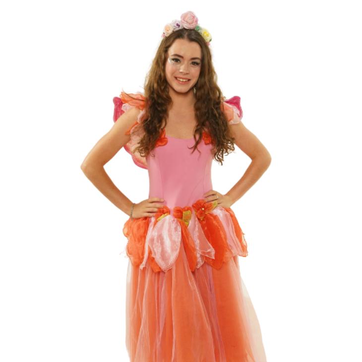 Pink and Orange Fairy